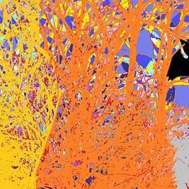 Visual Window Abstract by Maria Faria Rodrigues