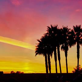 Vivid Sunset from Santa Cruz by Scott Eriksen