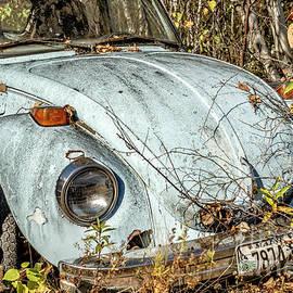 Volkswagen Beetle by Alana Ranney