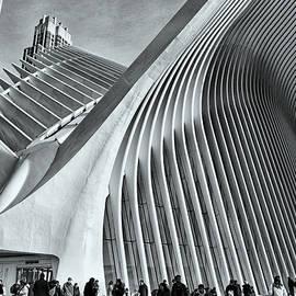 W T C Transportation Hub Oculus Exterior # 23 by Allen Beatty
