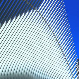 W T C Transportation Hub Oculus Exterior # 7 by Allen Beatty