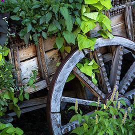 Wagon Load by Guy Shultz