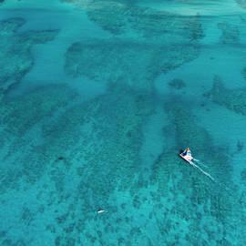 Waikiki Sailing by Sean Davey