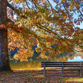 Waiting in the Country Fall  by Debra and Dave Vanderlaan