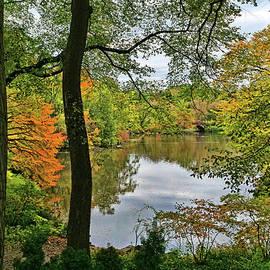 Walden Pond in Central Park by Allen Beatty