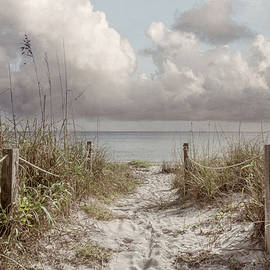 Walk along the Sand Dunes in Beachhouse Tones by Debra and Dave Vanderlaan