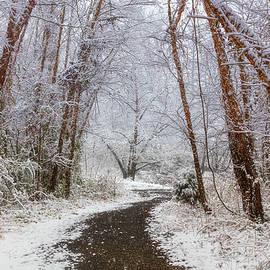 Walk into Winter by Debra and Dave Vanderlaan