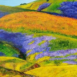 Walker Canyon Super Bloom by Jean Sackin
