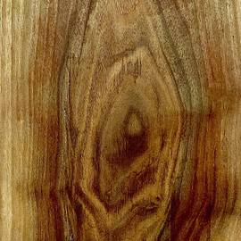 Walnut Slab by Daniel Thompson