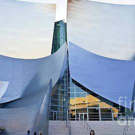 Walt Disney Concert Hall by Julieanne Case