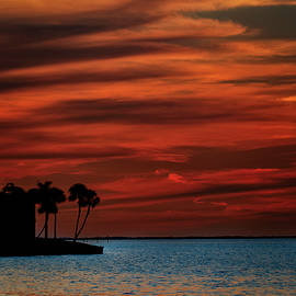 Warm Tropical Sunset by Patrick Morrissey