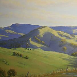 Warrigal after Rain by Alison A Murphy