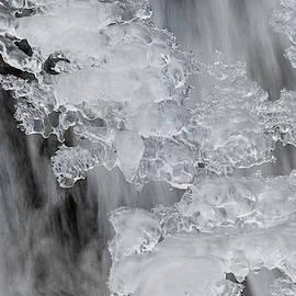 Water Art by Lieve Snellings