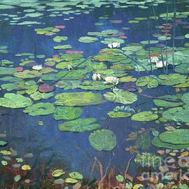 Water Lilies by Simon Kozhin