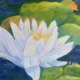 Water Lily Pond by Nancy Rabe