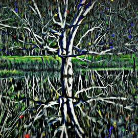 Water Reflection Painted Old Eucalyptus Gum Tree by Joan Stratton