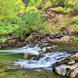 Water Stream in Zion NP by Lyuba Filatova