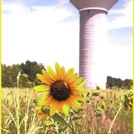 Water Tower Sun Flower by Jenny Revitz Soper