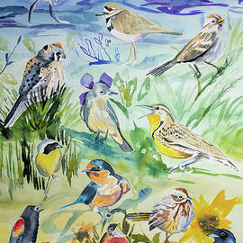 Watercolor - Lowry Open Space Birds by Cascade Colors