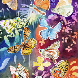 Watercolor - Western Butterfly Assortment by Cascade Colors