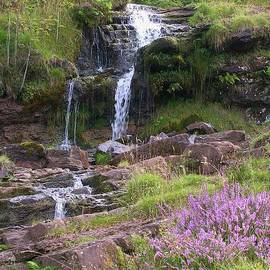 Waterfall And Heather In The Beacons by Lesley Evered