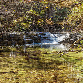 Waterfall Creek At Henning Conservation by Jennifer White