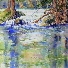 Waterfalls at Shumacher by Marsha Reeves
