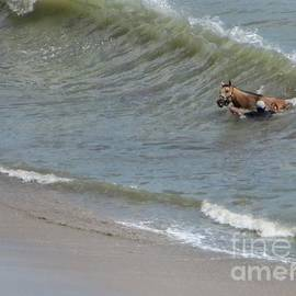 Wave Rider by Diana Rajala