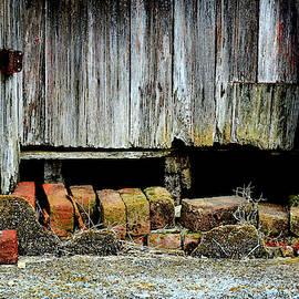 Weather-worn Door and Broken Bricks by Constance Lowery