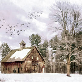 Weathered Barn with Tree by Betty Denise