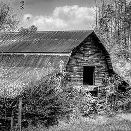 Weathered Wood Barn in Black and White  by Debra and Dave Vanderlaan