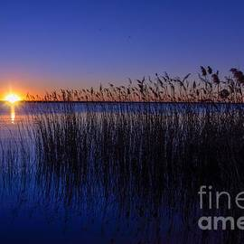 Weekend Sunrise by Diana Mary Sharpton