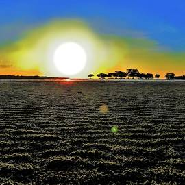 Weipa Beach Large Sun Sets by Joan Stratton