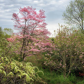 Welcome Spring by Eleanor Bortnick