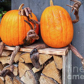 Welcoming pumpkins by Lyl Dil Creations