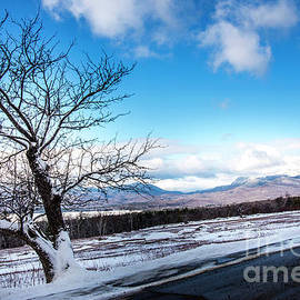 Weld Maine Tumbeldown Mt. by Alana Ranney