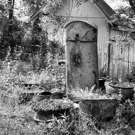 Well Gone Dry by Randall Dill