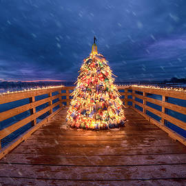 Wells Beach Christmas by Joann Vitali
