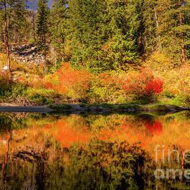 Wenatchee River Autumn Reflections by Mitch Shindelbower