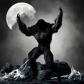 Werewolf Monster Moon Fantasy 3 by Barroa Artworks