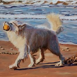 Wet dog with a ball by Elena Sokolova