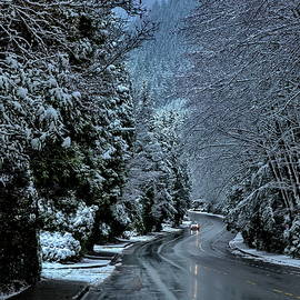 Wet Winter Road to Grouse Mountain  by Alex Lyubar