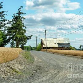 Wheat Farm On A Gravel Road by Beautiful Oregon