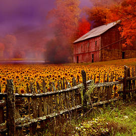 When Fall Comes by Jeff Burgess
