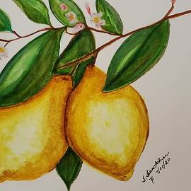 When Life Gives You Lemons by Terry Feather