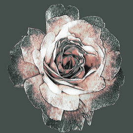 Whispering Rose by Susan Maxwell Schmidt