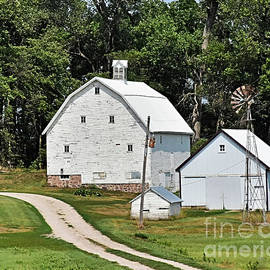 White Barn And Sheds by Kathy M Krause