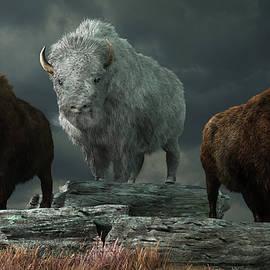 White Bison and Brown Bison by Daniel Eskridge