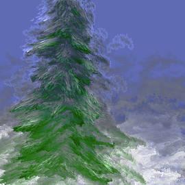 White Christmas #k5 by Leif Sohlman