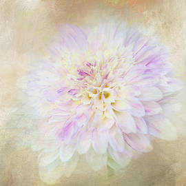 White Dahlia Abstract by Terry Davis